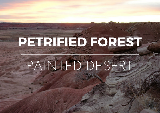 USA Road trip – Petrified Forest and Painted Desert