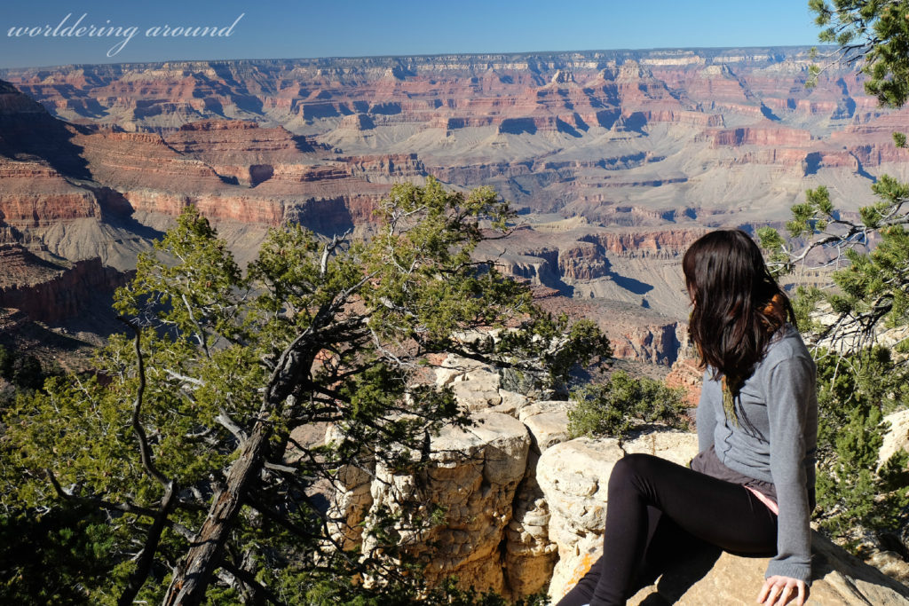 looking over Grand Canyon