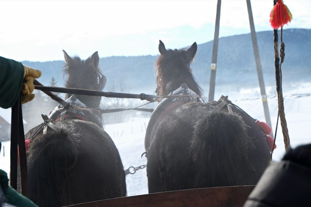 horse drawn sleigh ride (kulig) winter in Poland