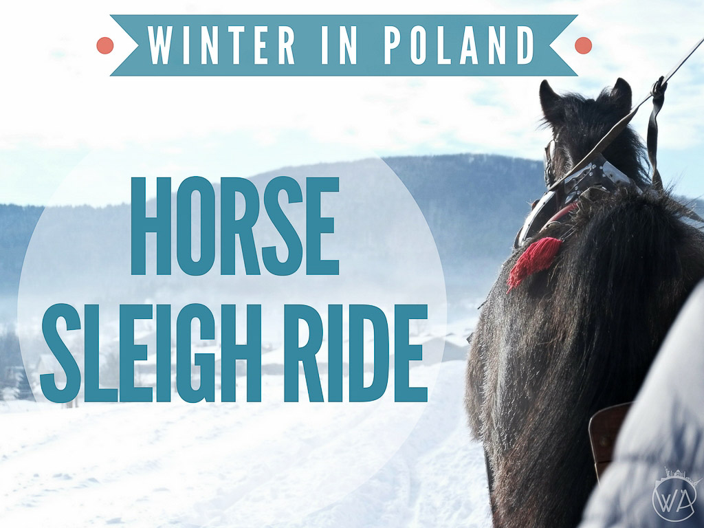 Horse drawn sleigh ride Poland in winter holidays