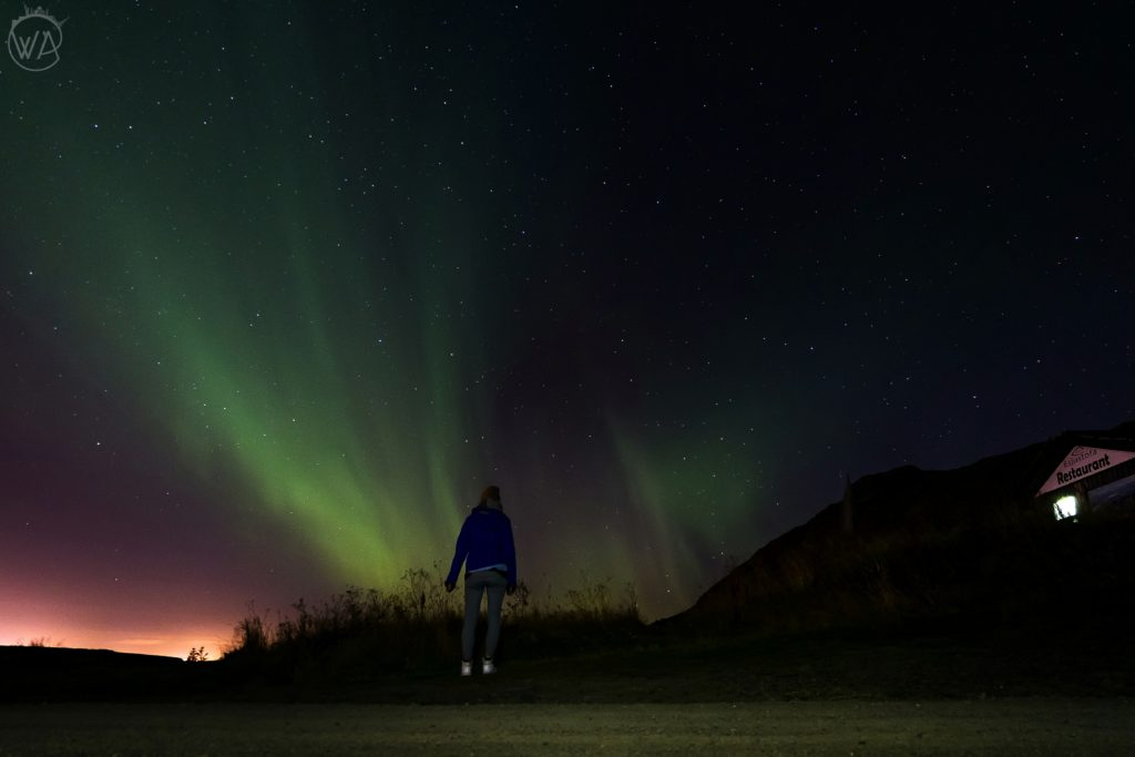 Northern Lights in Iceland is one of the top Iceland tourist attractions