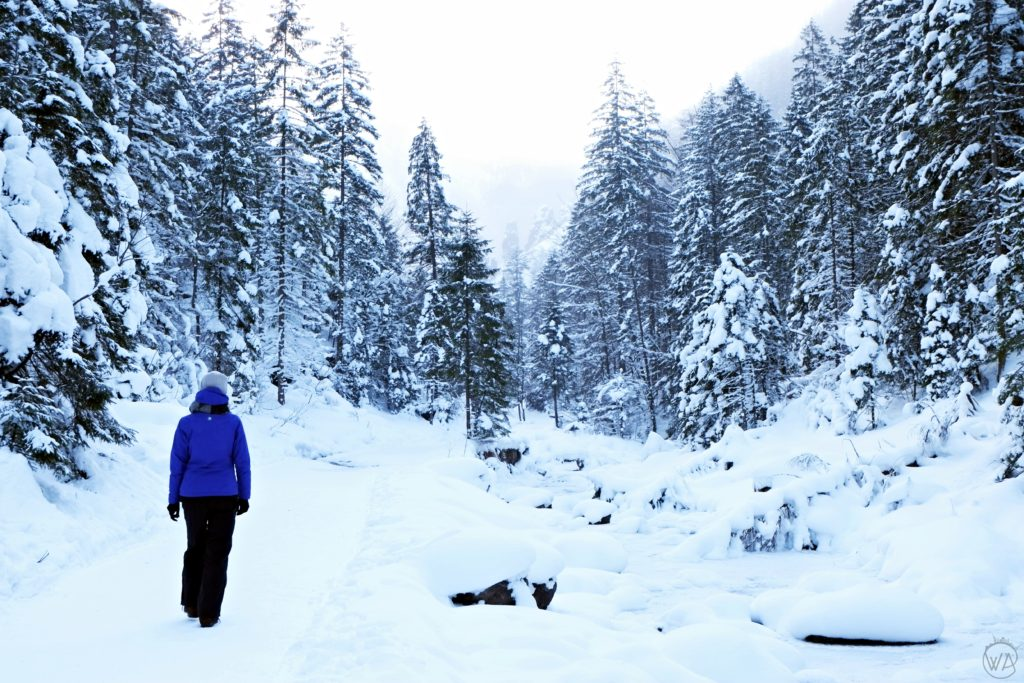 Walk in the valley - Things to do in Zakopane in winter and Tatra mountains in winter
