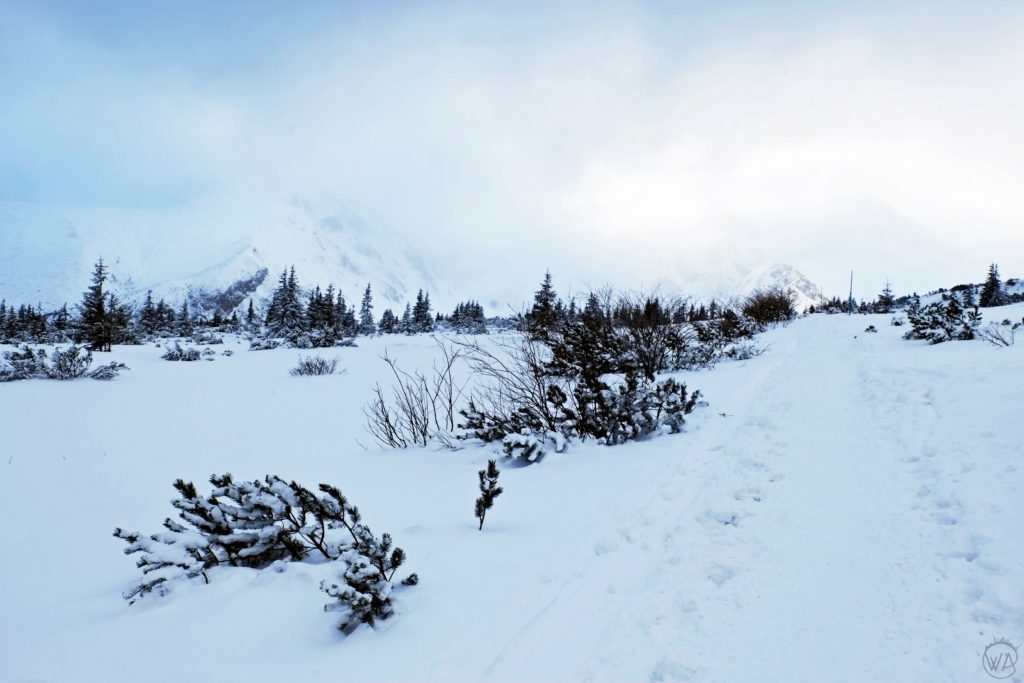 Tatra mountains pass - Tatra mountains winter hiking, winter in Zakopane