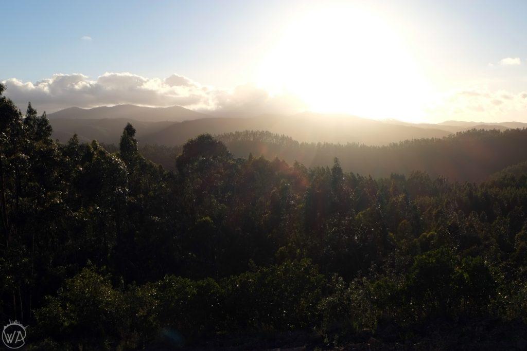 Monchique hills