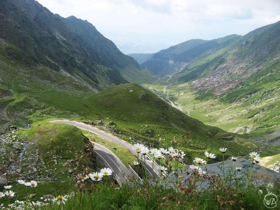 Transforgarasan highway Romania