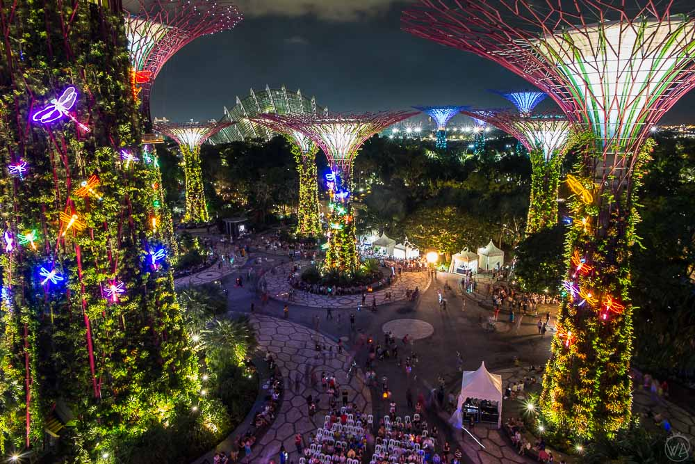 View from the OCBC Skyway Gardens by the Bay Singapore