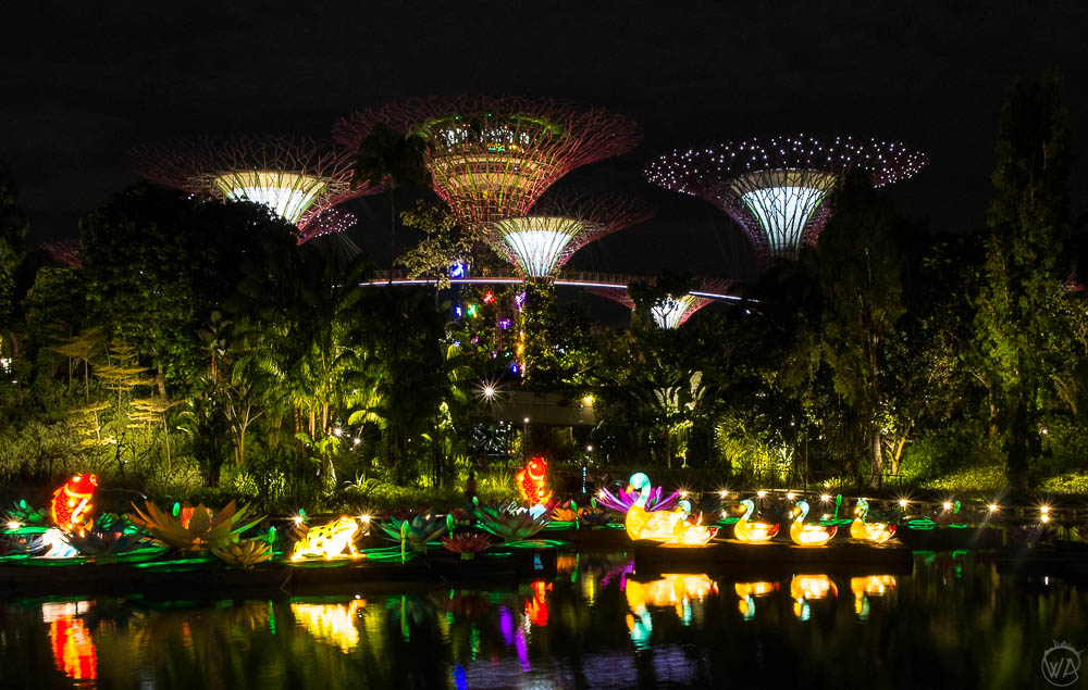 Dragonfly lake in the Gardens by the Bay in Singapore
