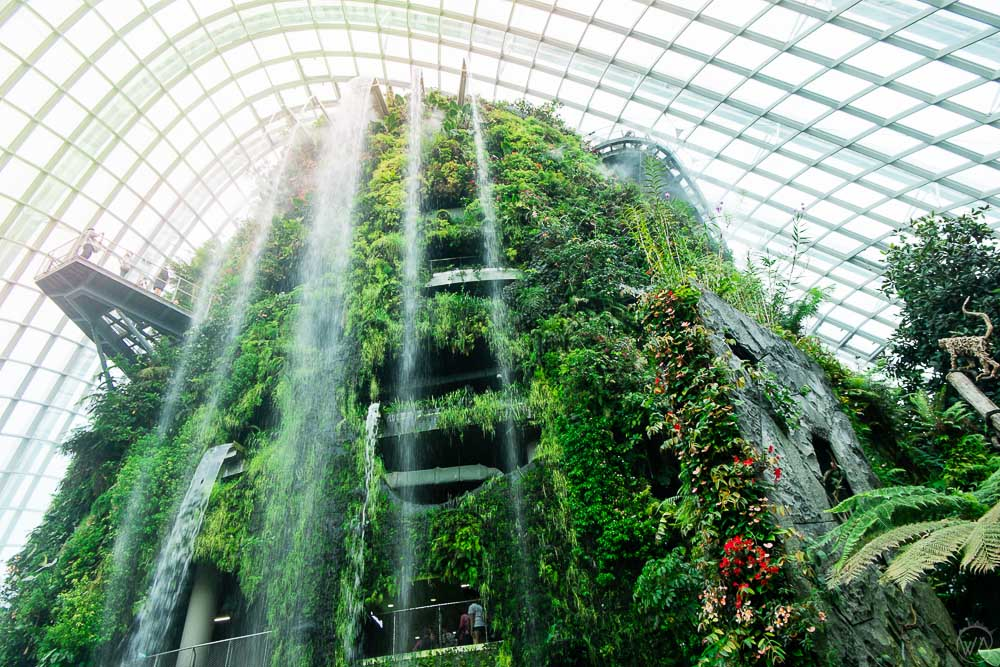 Cloud Forest in Gardens by the Bay Singapore