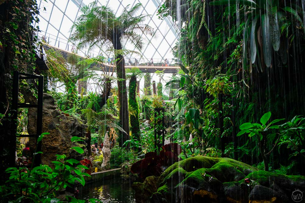 Water falling in the Cloud Forest in Gardens by the Bay Singapore