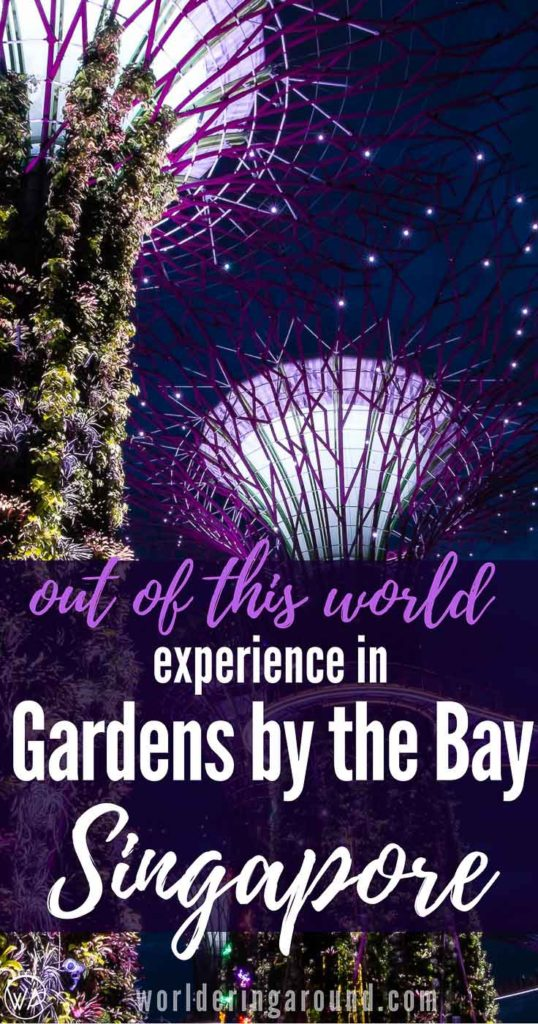 Discover amazing Gardens by the Bay in Singapore - top places to see and the best photo spots! Singapore travel, What to visit in Singapore in one day. Things to do in Singapore in one day, Singapore top places to visit, Food in Singapore, Singapore bucket list, top places in Singapore, Asia, Marina Bay Sands, Gardens by the Bay, infinity pool #Singapore #Asia #gardensbythebay | Worldering around #Singapore #Asia #GardensbytheBay #Marinabay #travel