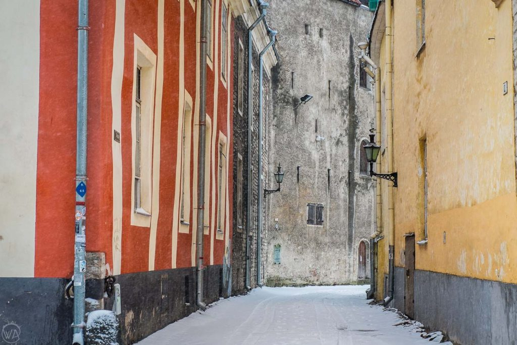 Tallinn sightseeing winter, things to do in Tallinn, narrow streets