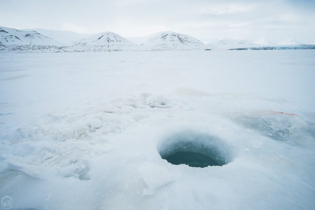 Svalbard tours snowmobile arctic adventures ice hole