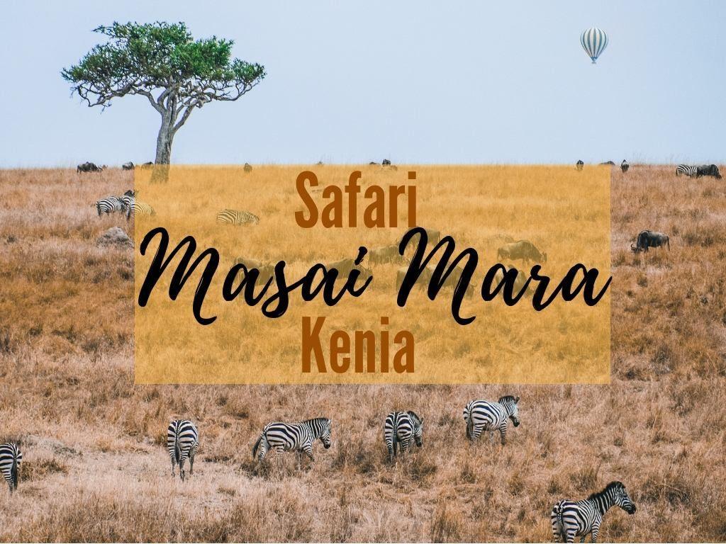 safari w kenii masai mara
