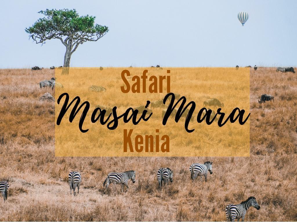 Niesamowite Afrykańskie zwierzęta – Safari Masai Mara w Kenii [GALERIA…