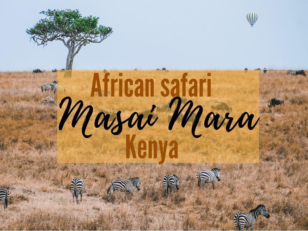 African safari animals Masai Mara safari kenya great migration