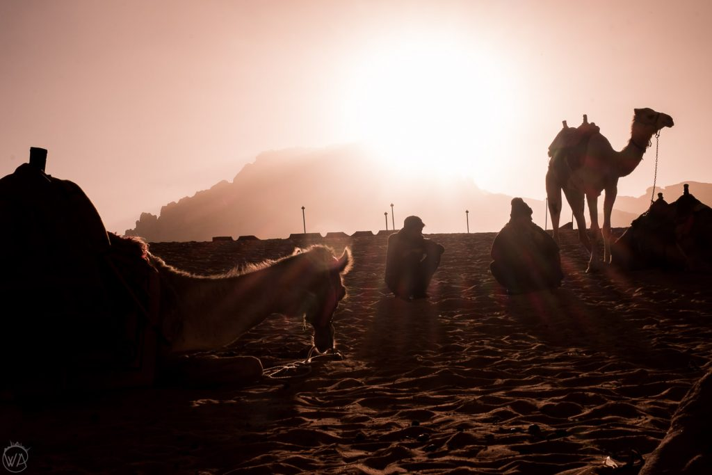 People and their camels. Wadi Rum