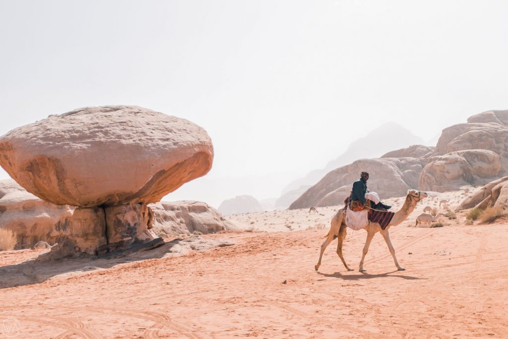 The people, the camels, and the rocks are all part of the same landscape, Wadi Rum, Jordan