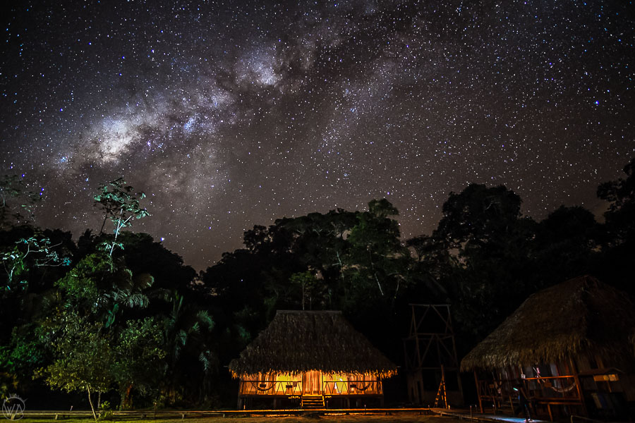 Milky way and night sky in Ecuadorian Amazon