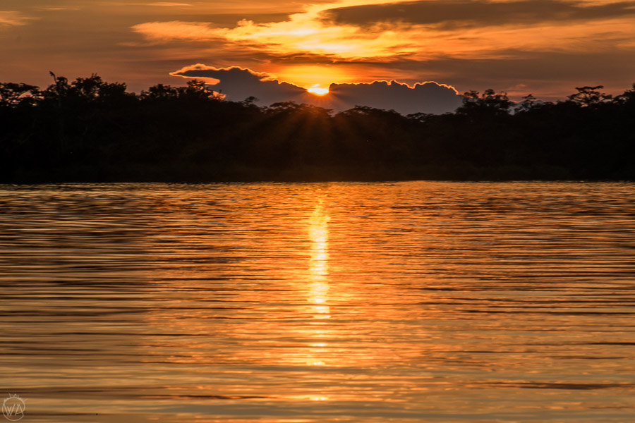 Sunset in Laguna Grande, Cuyabeno Wildlife Reserve