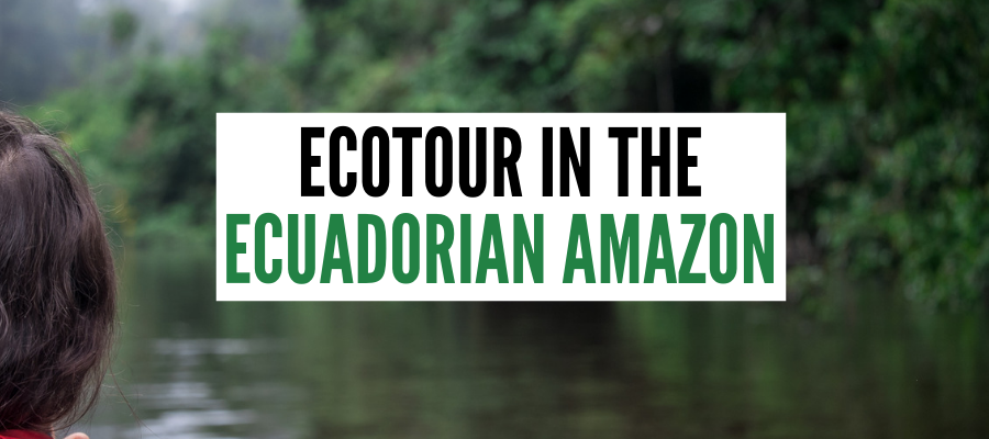 ECUADOR AMAZON TOUR COVER