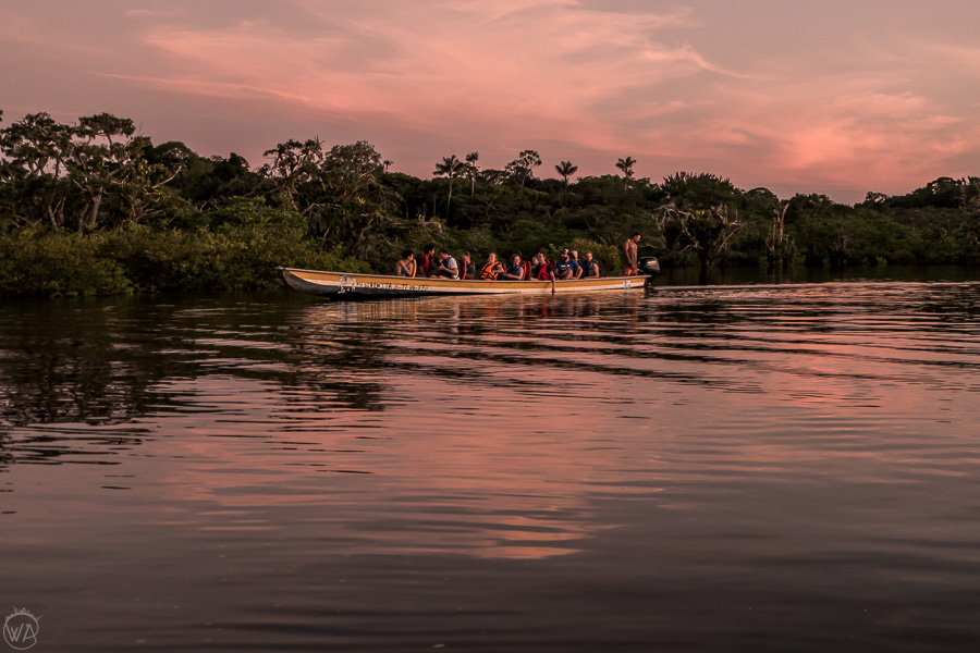 Pink sunset in Laguna Grande, Cuyabeno Wildlife Reserve during Ecuador Amazon tour