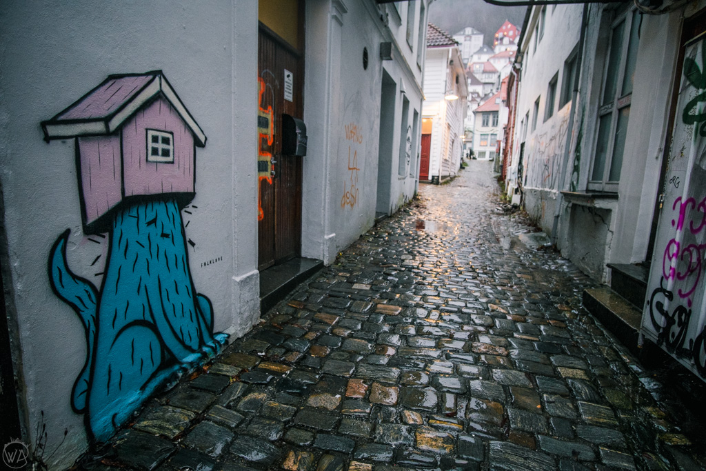 Street art in Bergen in winter in a rainy day