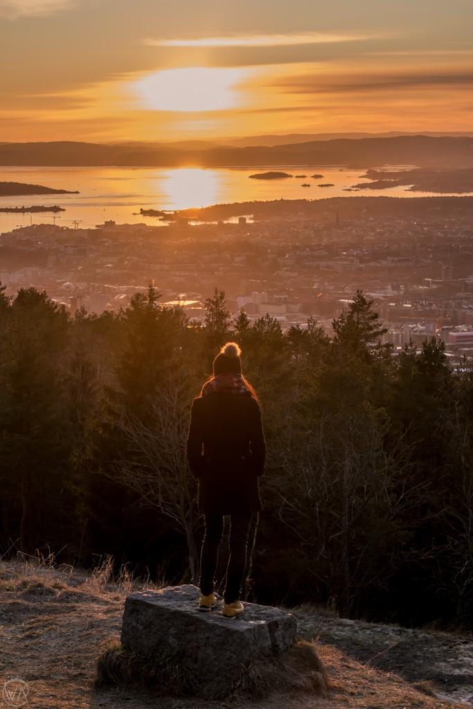 View from Grefsenkollen, Oslo Norway