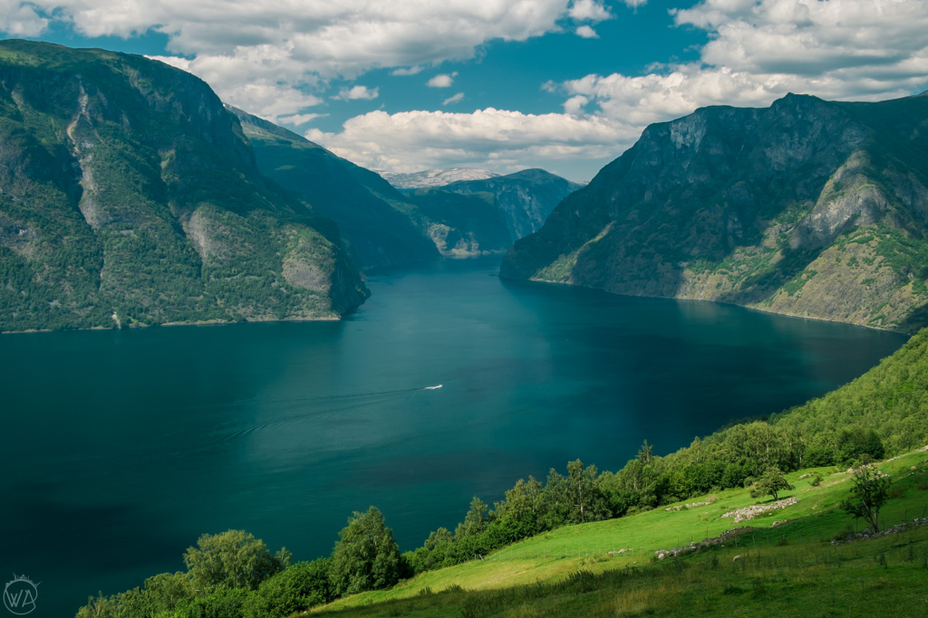 things to do in Flam, Norway, take the cruise