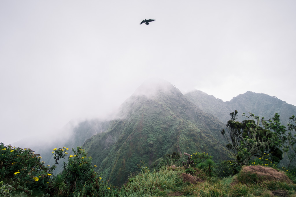 Mount Sabyinyo hike, Uganda