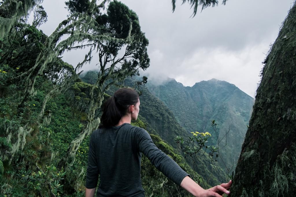 Hiking in Uganda, Mount Sabyinyo