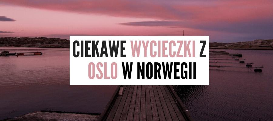 Ciekawe Wycieczki z Oslo – 27 Pomysłów Gdzie Pojechać W Okolicach Oslo