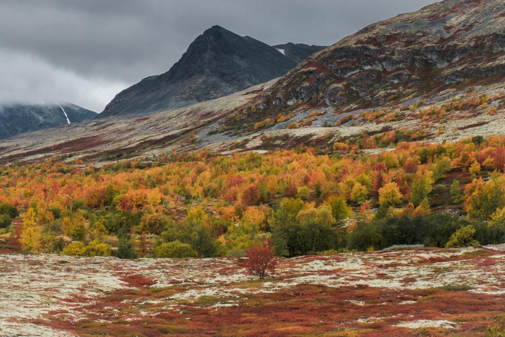 Autumn in Rondane