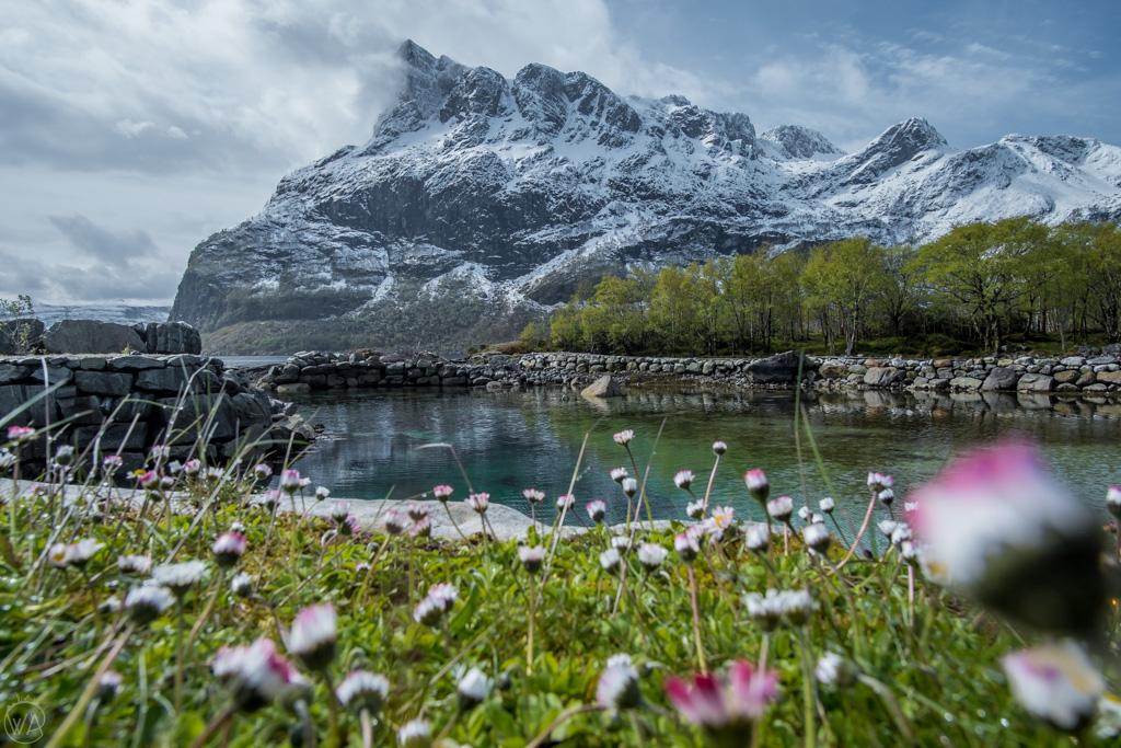 View to Hornelen