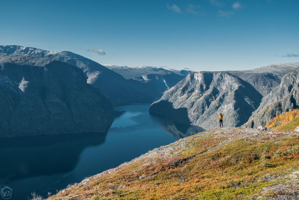 Fjords in autumn